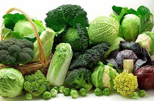 rau xanh tốt cho bệnh huyết áp cáo